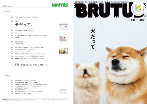 BRUTUS最新号『犬だって。』